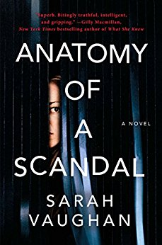Anatomy of a Scandal US
